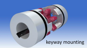 coupling with keyway mounting